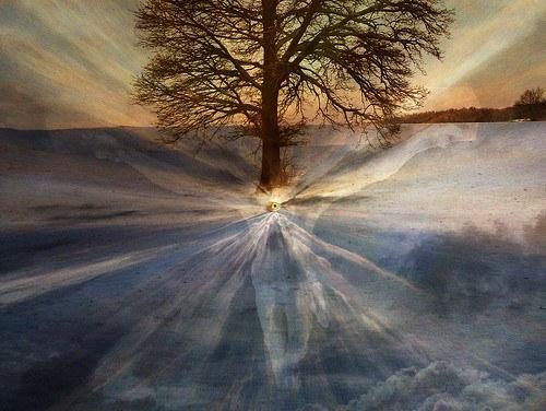 Awakening In The Garden Of Truth