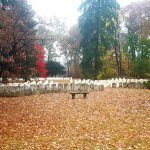 Pilgrimage to Teilhard's Grave